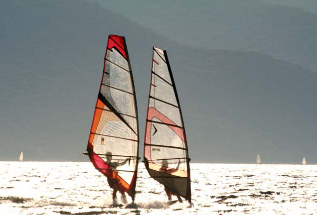 surfclub37
